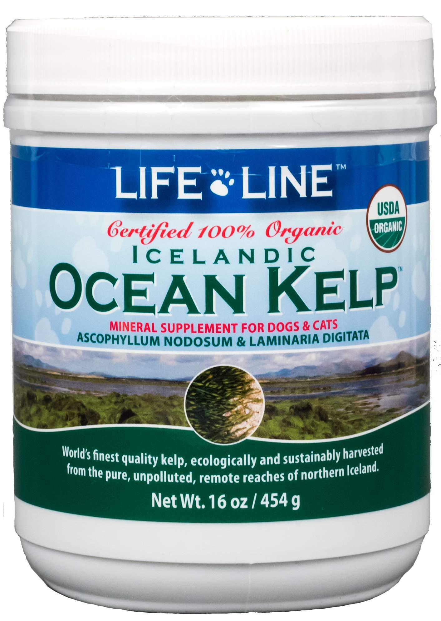 Life Line Pet Nutrition Organic Ocean Kelp Supplement for Skin & Coat, Digestion, Teeth & Gums in Dogs & Cats, 16 oz by Life Line Pet Nutrition