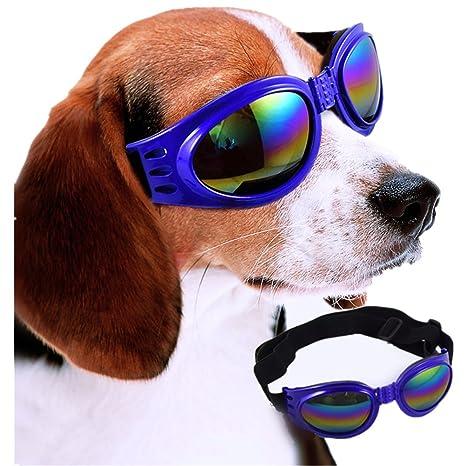 27be208726567 Lunettes de soleil pour chien Sports de plein air pour un cheval de  décoration Lunettes de décoration Lunettes de fête (bleu)  Amazon.fr   Animalerie