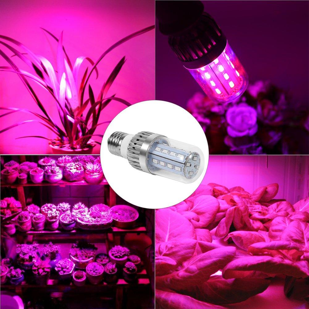 Bombilla led Grow Grow, luces Grow Maiz para plantas de interior, E27 Grow Lamp para Hydroponics Greenhouse Organic, luces vegetales para plantación de ...