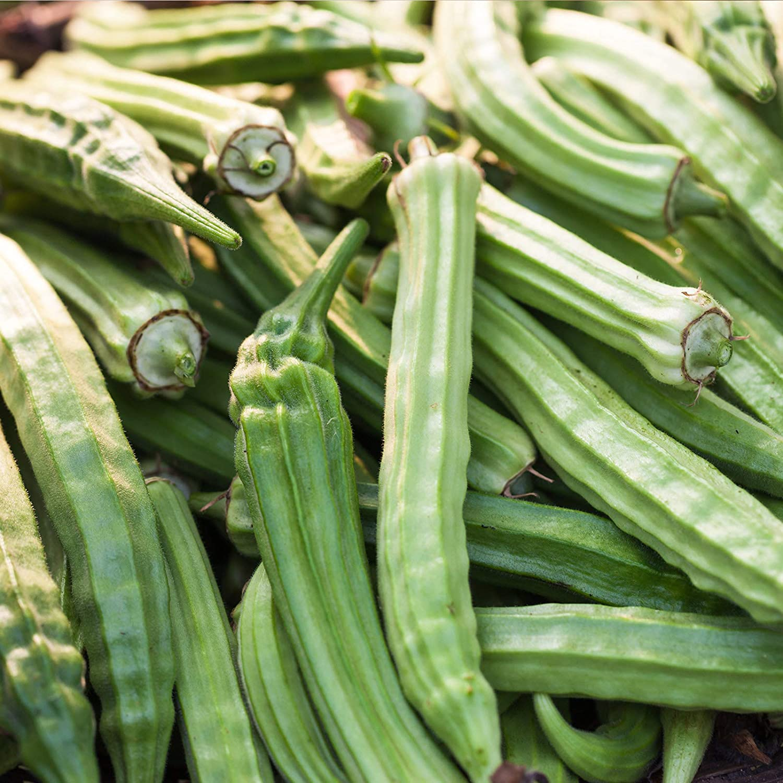 Okra Garden Seeds - Emerald - 1 Lb - Heirloom, Non-GMO Vegetable Gardening Seeds - Open Pollinated - Abelmoschus esculentus