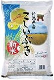 【お弁当に最適】【冷めても美味しい】30年産新潟県産こしいぶき 5kg(精米)