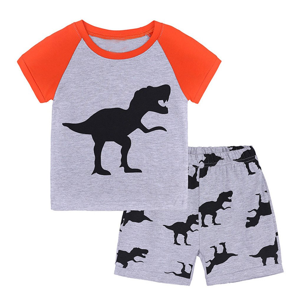 LOOLY Little Boys Dinosaur Shorts Set Summer Cotton Short Sleeve Clothing Sets