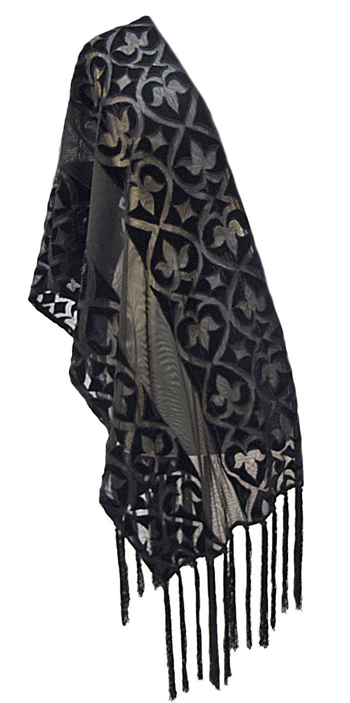 ''Alaina'' Appliqued Velvet Net Scarf Stole Shawl Wrap with Hand Knotted Fringe Black
