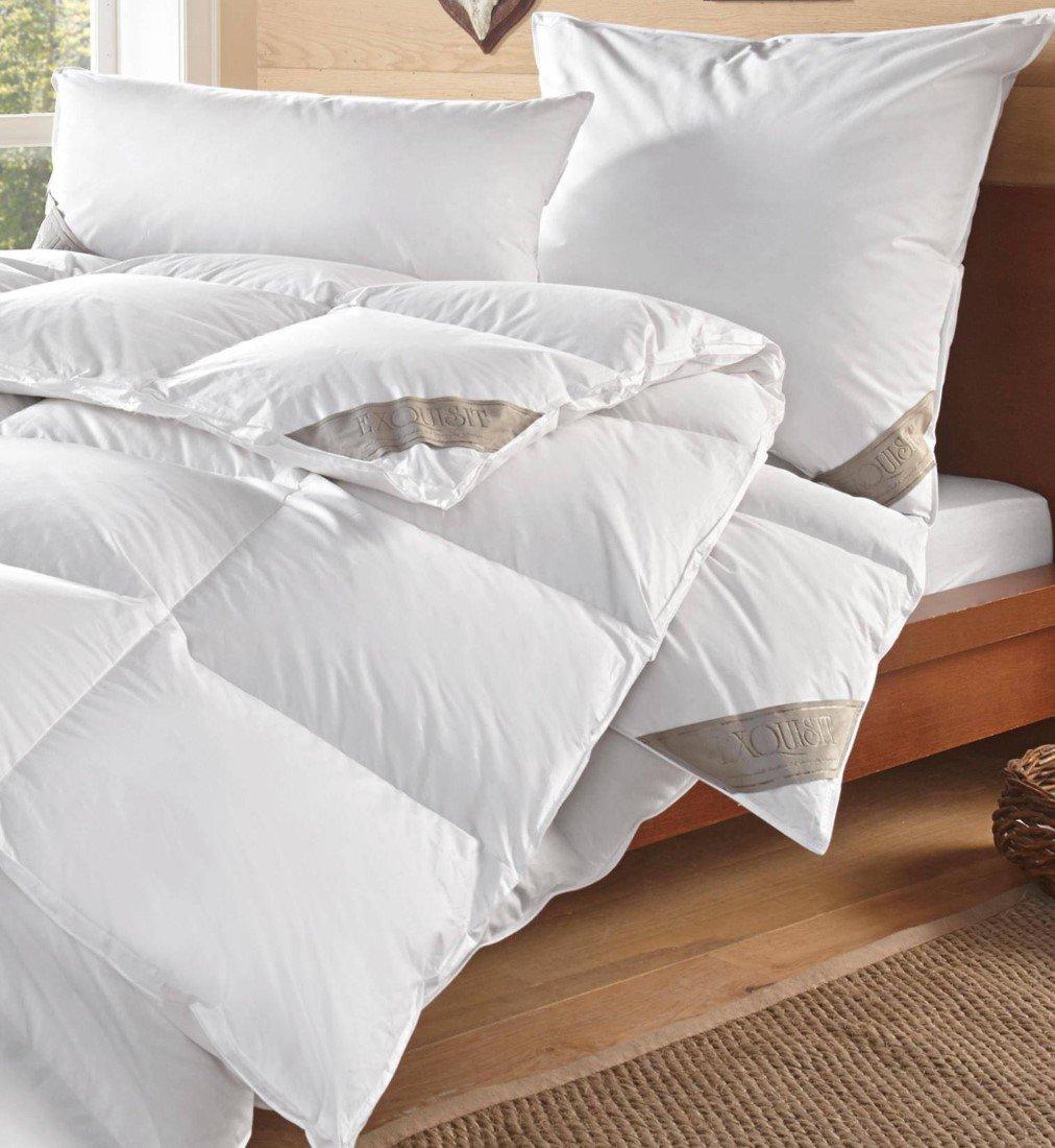 WohnTRAUM 24 Daunen-Kassettendecke Warme Stepp-Bettdecke Exquisit 80% Daunen 20% Federn - Natur Pur - Made in Germany - 155x220 cm - Füllung  1.220 g