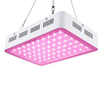 Amazon.com : Roleadro 5W-Series 300W Led Grow Plant Light, 2nd ...