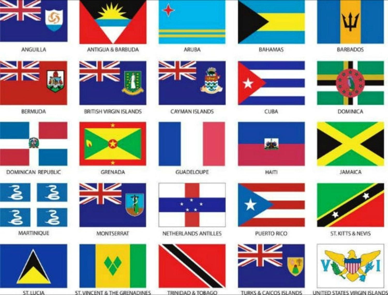AES Islas del Caribe 3 x 5 de Bandera Set de 25 País poliéster Banderas (Especial 25 Unidades) Doble Costura Resistente a la decoloración Premium Calidad: Amazon.es: Jardín