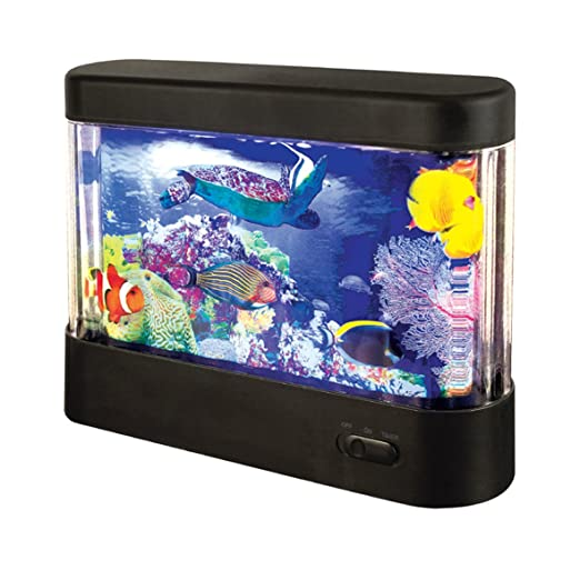 Global Gizmos - Acuario de plástico LED. Funciona con pilas. Color negro.: Amazon.es: Iluminación