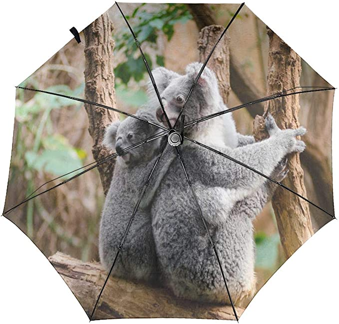 Cute Koala Bears And Floral Element Rainproof and Windproof UV Protection Double Layer Folding Inverted Umbrella with C-Shaped Handle Reverse Umbrellas For Car Rain Outdoor