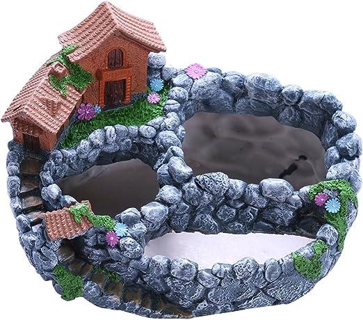OUNONA - Maceta de jardín de hadas en miniatura para plantas de cactus suculentas: Amazon.es: Hogar
