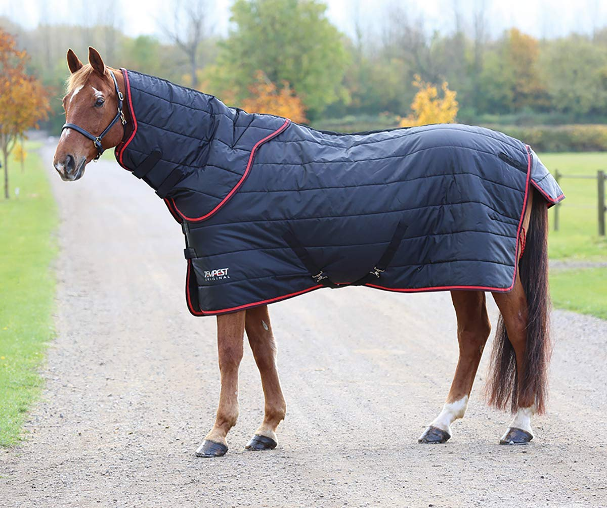 6ft0\ Shires Tempest 100 Stable Rug and Neck Set Black Red