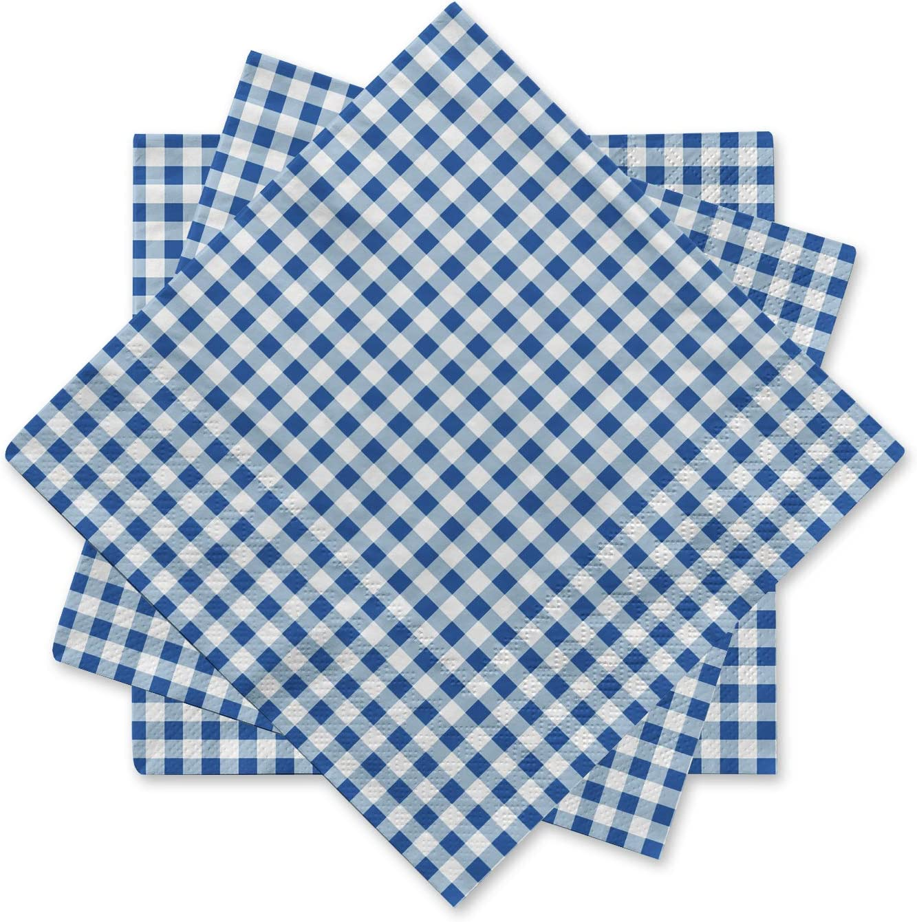 13X21 Smaller Laps Red and White Gingham Red White Checkered Napkins Thin Fabric Set of 4 Cloth Picnic Napkins