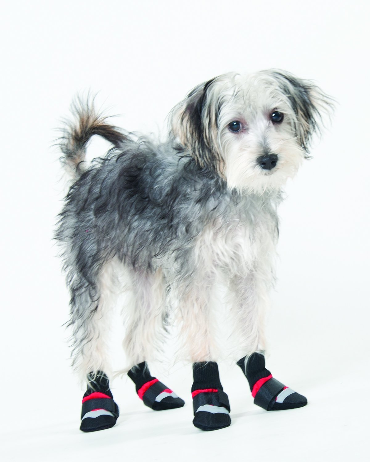Ethical Pet Fashion Pet Lookin Good Extreme All Weather Boots for Dogs, Large, Red