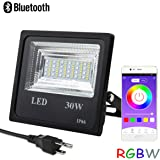 Autai LED Flood Light Waterproof 30W Spotlight Bulb RGB Multi Color Changing Dimmable with Smart Bluetooth APP Control for Courtyard, Garden, Lawn, Tree, Christmas Decoration