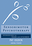 Sensorimotor Psychotherapy: Interventions for Trauma and Attachment (Norton Series on Interpersonal Neurobiology Book 0)