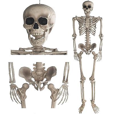 Squelette 160 cm - Décoration Halloween Fêtes Horreur
