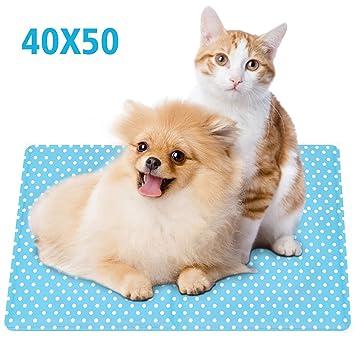 Alfombrilla Refrescante Almohadilla De Enfriamiento Para Perros Mascotas Gatos Manta Refrescante Almohadillas De Gel De Auto Enfriamiento De La ...