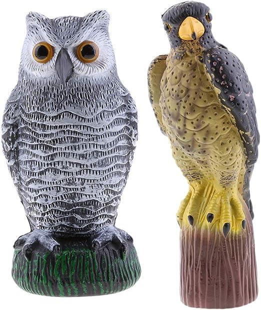 LOVIVER 2pcs Realista Figura de Águila Búho Decoración de Escritorio/Hogar/al Aire Libre/Jardín/Oficina: Amazon.es: Jardín