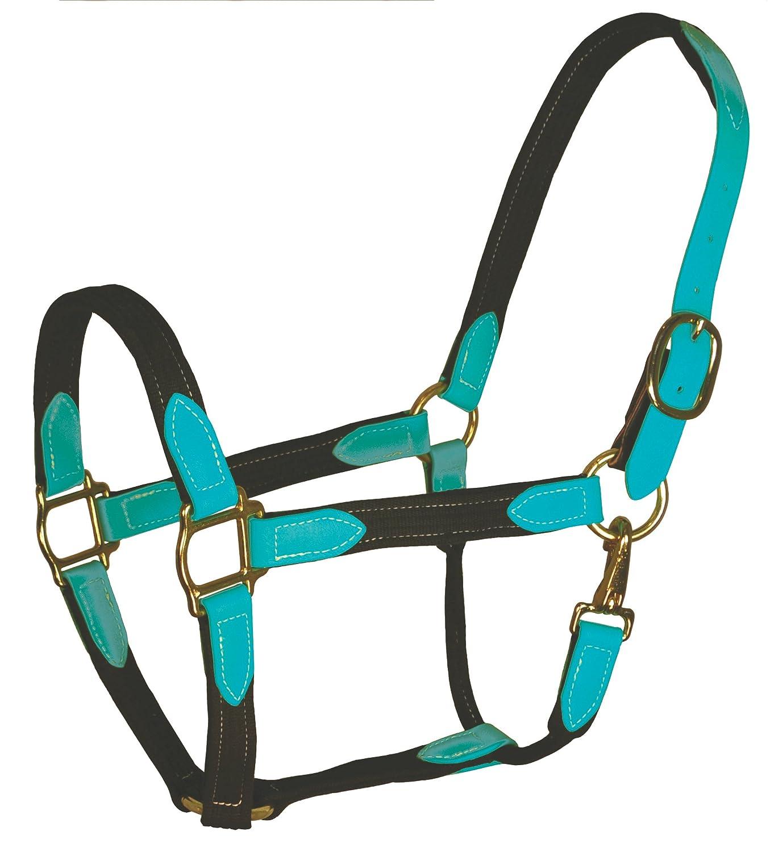 Perri S 's 's O/ S Ornage Blk/ Ornage Beta &コットン安全ホルター、ブラック/オレンジ、オーバーサイズ B01FKKKFGI, Gulliver Online Shopping P15:123ff1cb --- cooleycoastrun.com