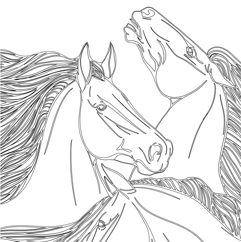 Vive Le Color! Horses (Adult Coloring Book): Amazon.de ...