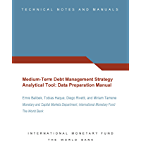 Medium-Term Debt Management Strategy Analytical Tool (English Edition)