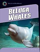 Beluga Whales (21st Century Skills Library:
