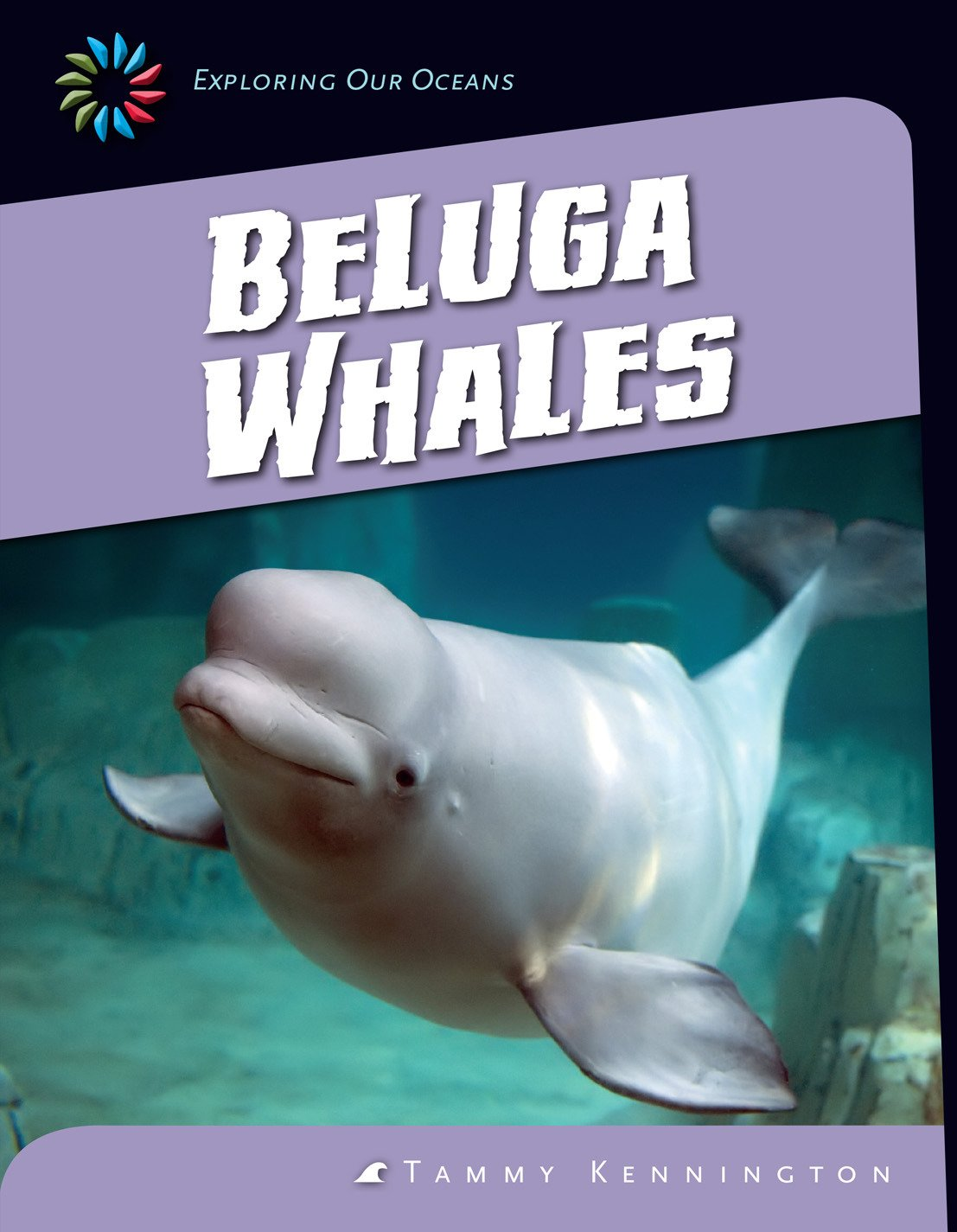 Beluga Whales (21st Century Skills Library: Exploring Our Oceans) (English Edition)