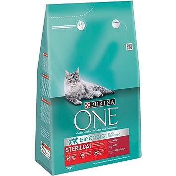 Purina ONE Bifensis Pienso para gatos Esterilizados Buey y Trigo 3 Kg: Amazon.es: Amazon Pantry