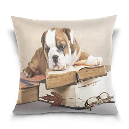 ALAZA manta funda de almohada Funda de cojín (cuadrado funda de almohada, Purebred bulldog
