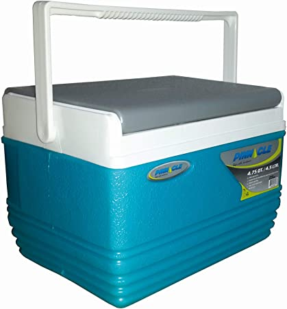 Pinnacle Mini Nevera Portátil 4,5 litros, Camping, Deportes, Playa, Azul Celeste, 21 x 20 x 16 cm