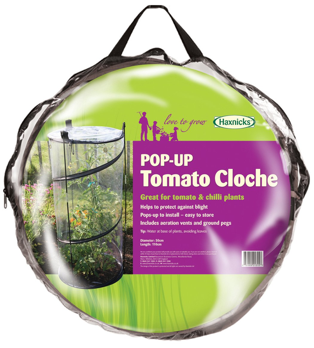 Amazon.com : Tierra Garden 50 6070 Haxnicks Twist Up Tomato Cloche : Garden  U0026 Outdoor