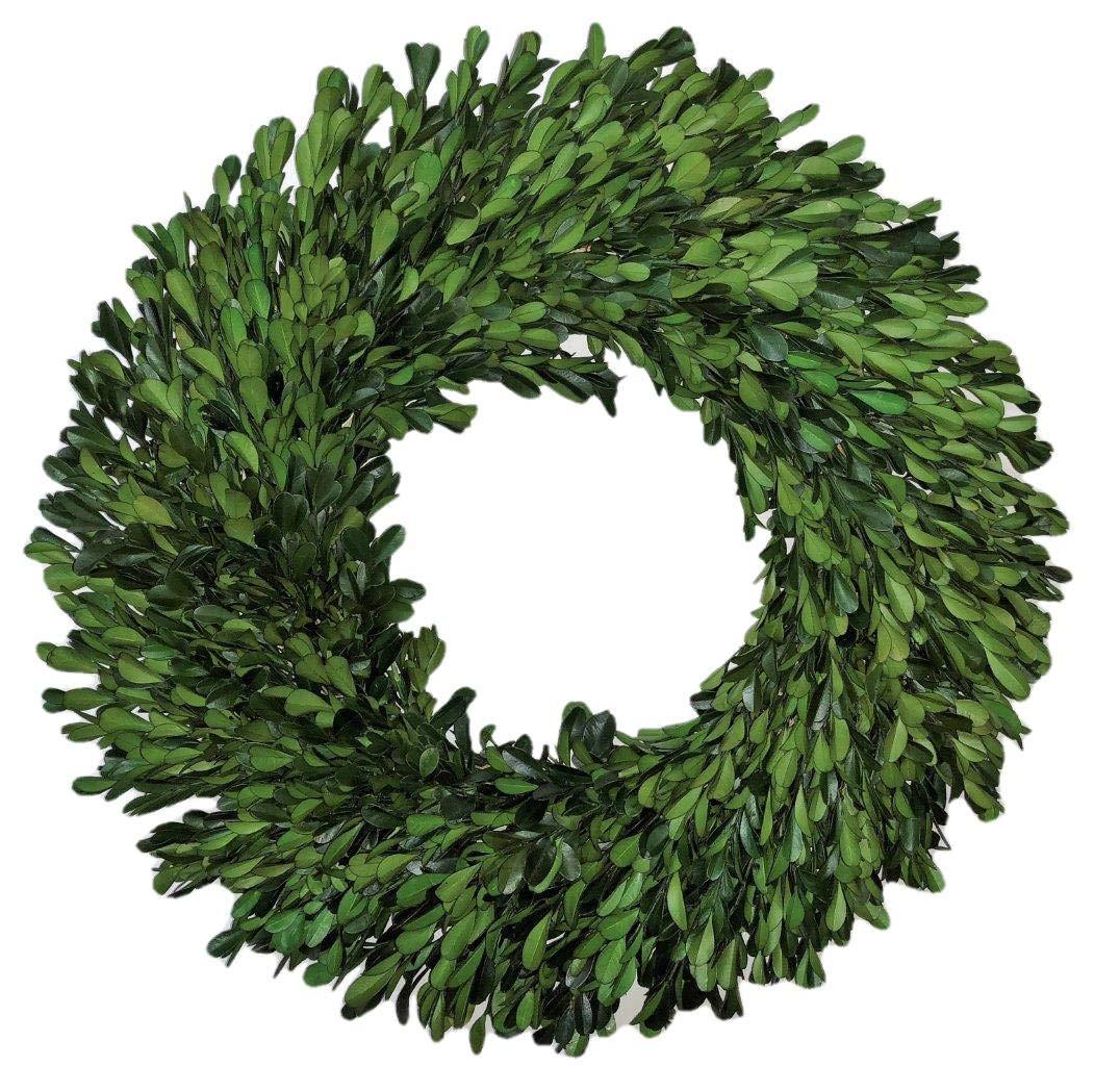 """Preserved Garden Boxwood Wreath 14"""" Flora Decor B0064H0EXQ"""