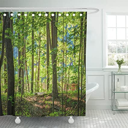 Emvency Shower Curtain Waterproof Bright Green Forest Natural Walkway In Sunny Day Light Sunshine Trees Sun