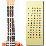 L'MS Ukulele Fretboard Note Decals Fingerboard Frets Map Sticker for Beginner Learner Practice (Ukulele-Multicolor)