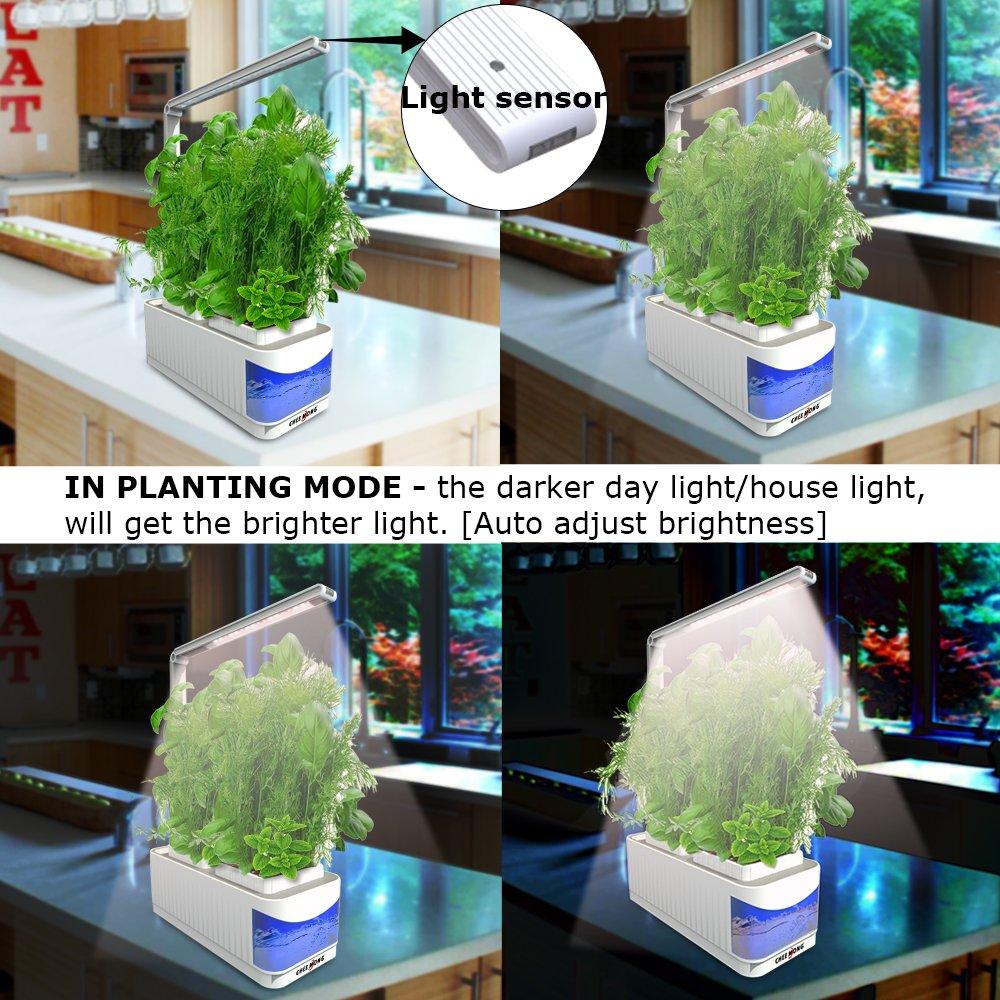Basin indoor gardening 5 best hydroponics kits to grow your indoor basin indoor gardening amazon com indoor hydroponic herb garden kit lamp desk lamp for workwithnaturefo