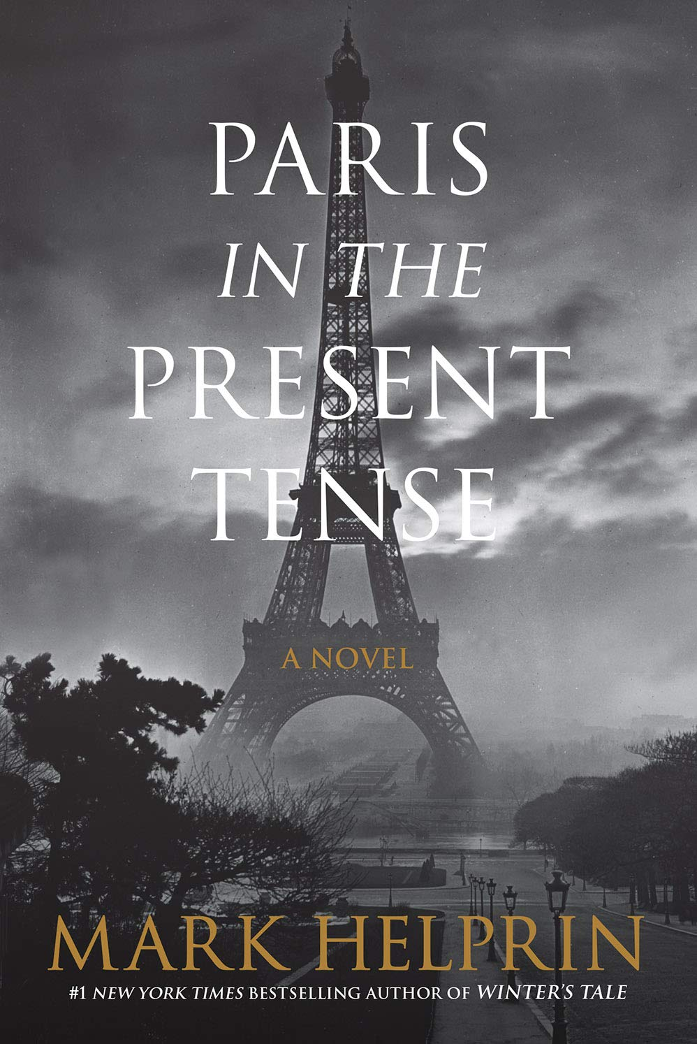 Image result for paris in the present tense amazon