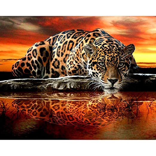 Zxx5D Diamond Painting 5D Completo Diamante Tatuaje Tigre Punto De ...