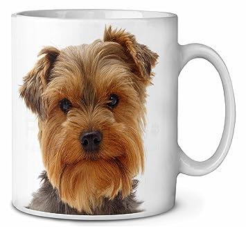 Niedliche Yorkshire Terrier Hund Kaffeetasse Geburtstag
