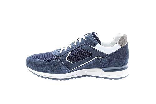 3c793823e85a Nero Giardini P900831U Sneakers Uomo: Amazon.it: Scarpe e borse