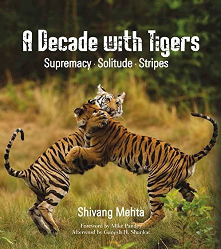 A Decade with Tigers: Supremacy � Solitude � Stripes