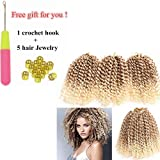 9 Bundles/Lot Eunice Marlybob Crochet Hair 8 Inch Ombre Blonde Synthetic Braiding Kinky Curly Hair Extensions (27 mix…