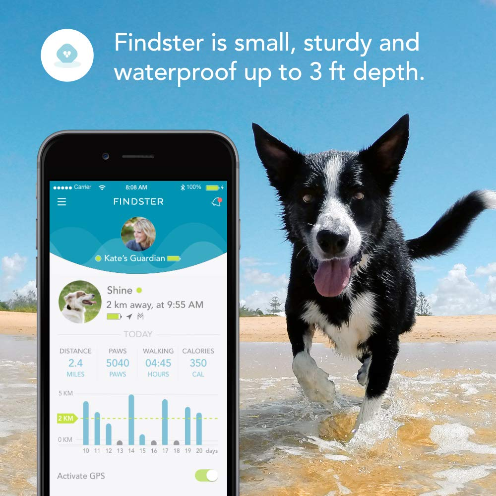 Findster Duo+ Pet Tracker Free of Monthly Fees - GPS Tracking Collar for Dogs and Cats & Pet Activity Monitor - Tracks 2 Pets by Findster (Image #6)