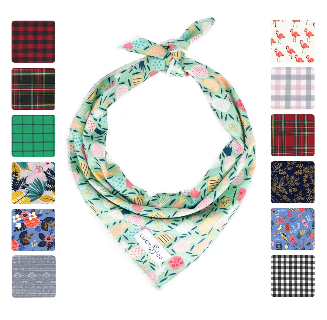 Lucy & Co. Dog Bandana - Small Large Designer Puppy Clothes - Bandannas for Boy and Girl Dogs - Accessories Fit Small Medium Large Dogs (Large, Gigi)