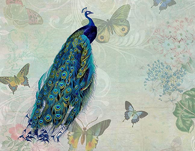 1664d239c25ff Image Unavailable. Image not available for. Color: Peacock and Butterflies  Vintage Collage Fine Art Print ...