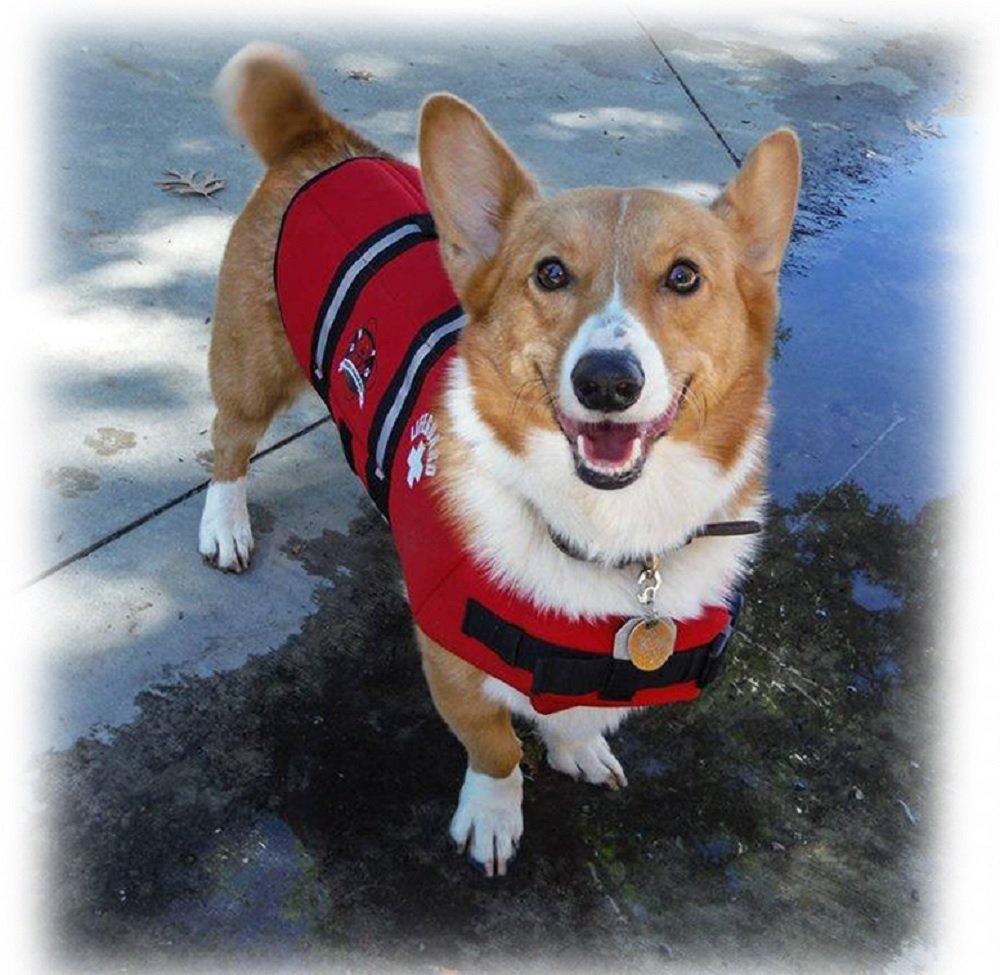 Paws Aboard Red Neoprene Life Jacket Dog or Cat Life Preserver MEDIUM 20-50 lb