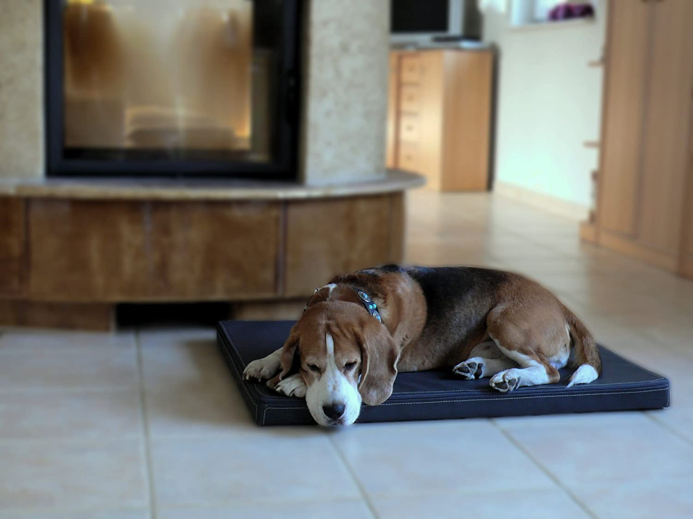 Omar - Ortho ortopédico hundematte piel sintética Perros cama colchón 100 x 135 cm marrón: Amazon.es: Productos para mascotas