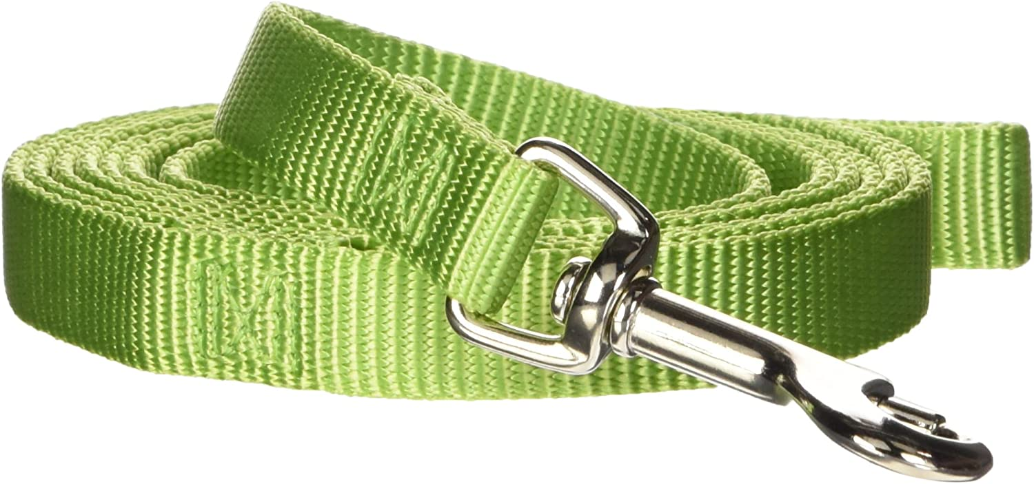 Hamilton Single Thick Deluxe Nylon Lead with Swivel Snap, 5/8-Inch by 6-Feet, Lime Green