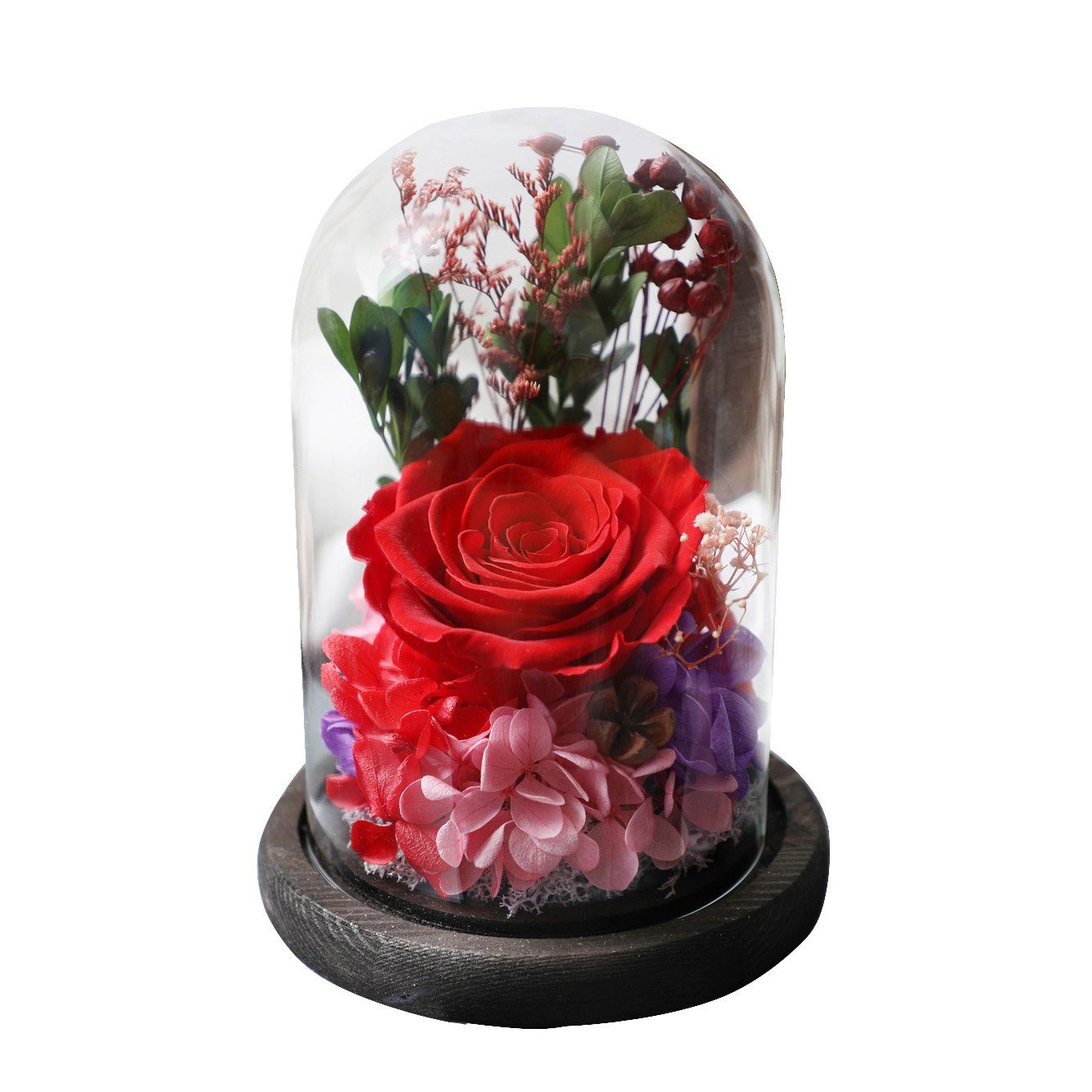 Amoleya 4.9 Inch Handmade Preserved Rose Enchanted Rose that Lasts in Glass Dome,Red