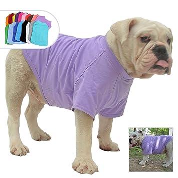 Amazon.com: Lovelonglong 2019 Ropa para mascotas disfraces ...