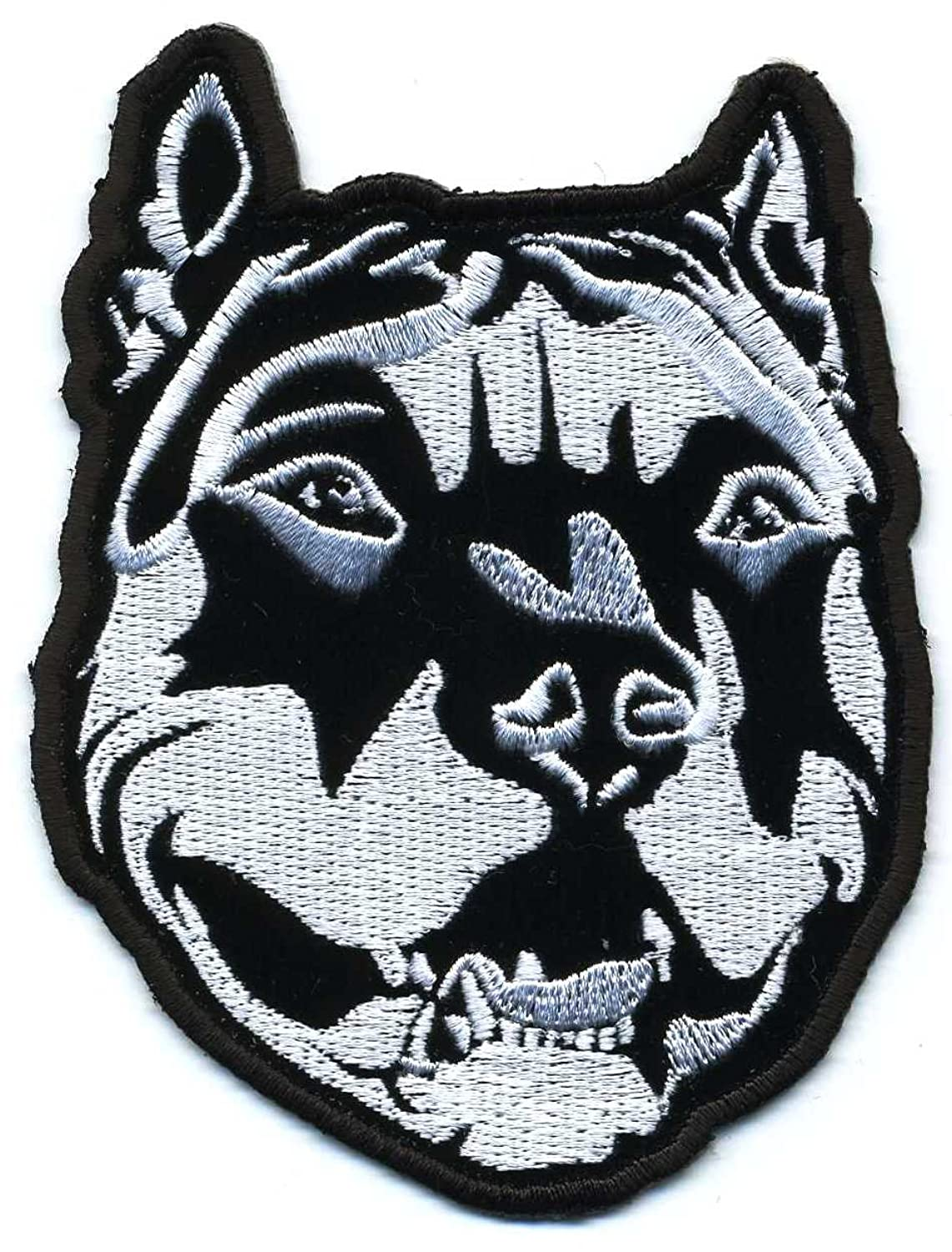 Amazon Embroidered Iron On Patch