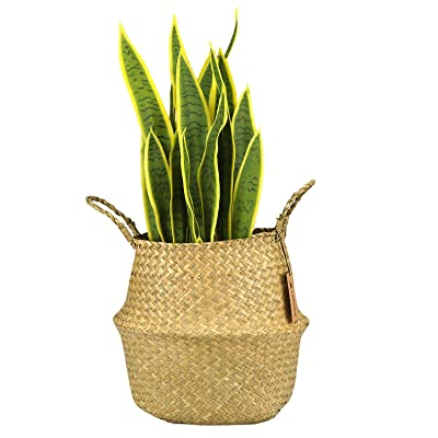 """LEEPES Natural Seagrass Belly Basket Panier Storage Plant Pot Collapsible Nursery Laundry Tote Bag with Handles(10"""" Open Diameter x10.5 Height, Natural): Home & Kitchen"""